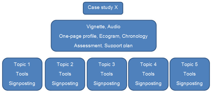 Image: Structure of the case study materials for Carers